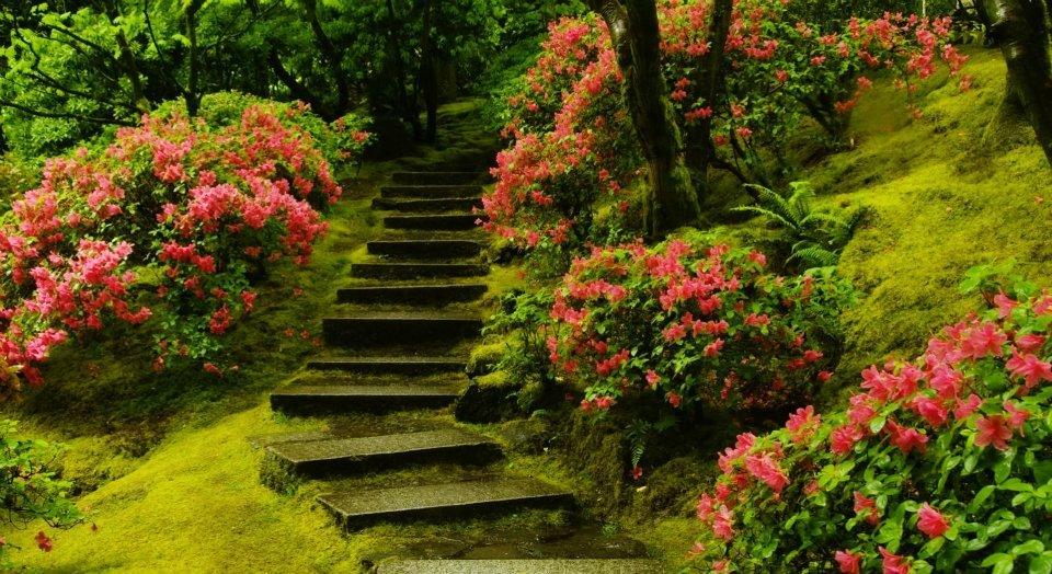 Appel à tous les jardiniers du monde dans Appel à tous les jardiniers du monde 426856_279046382165198_195024383900732_674433_1092840455_n
