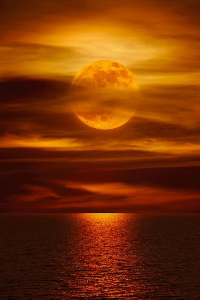 548175_446077315442509_472376518_n lune dans ASTROLOGIE (signes et ascendants)